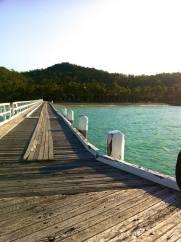 mollie island arlie beach australia