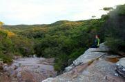 sydney national forest australia