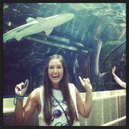 girl and sharks