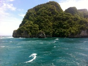 phi phi island water and green bush