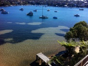 bay in sydney australia, dock and boats